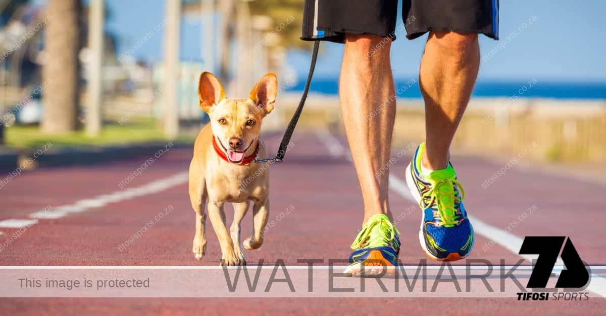 Keep this in mind when running with your dog
